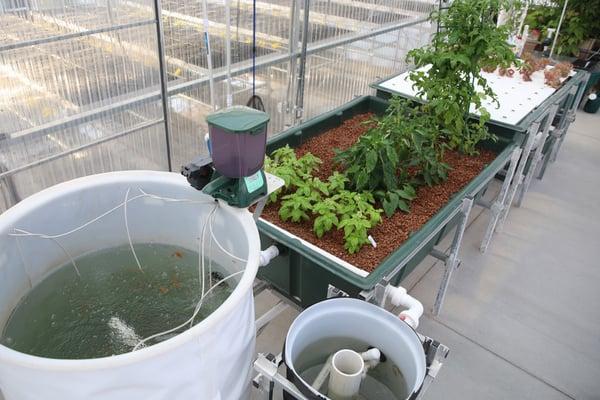 2018-08-10 - Greenhouse Equipment Closeups 02-1