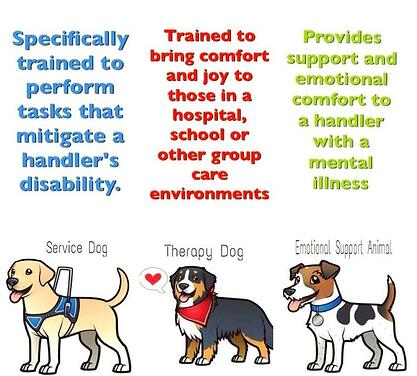 pets-clipart-therapy-dog-8.jpg